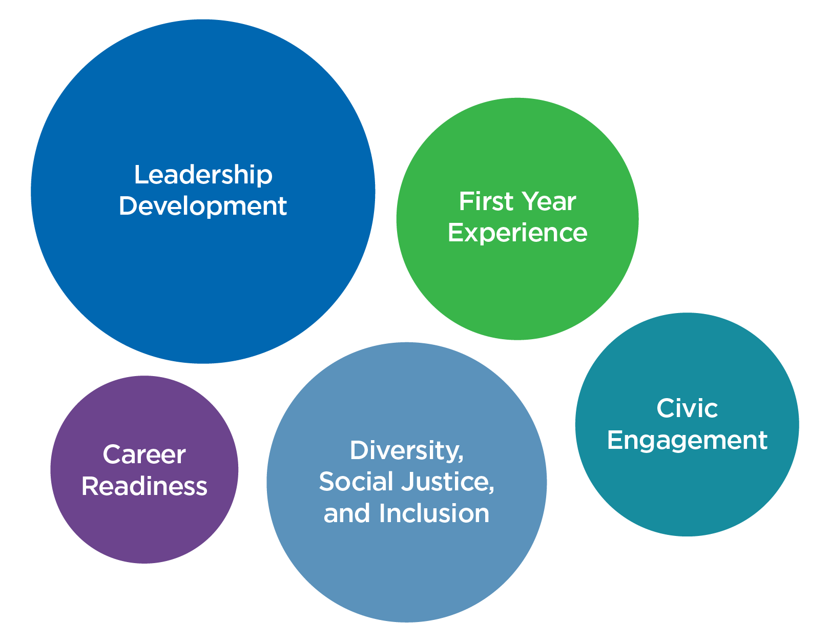 Leadership Development, First Year Experiences, Career Readiness, Civic Engagement, Diversity, Social Justice, and Inclusion